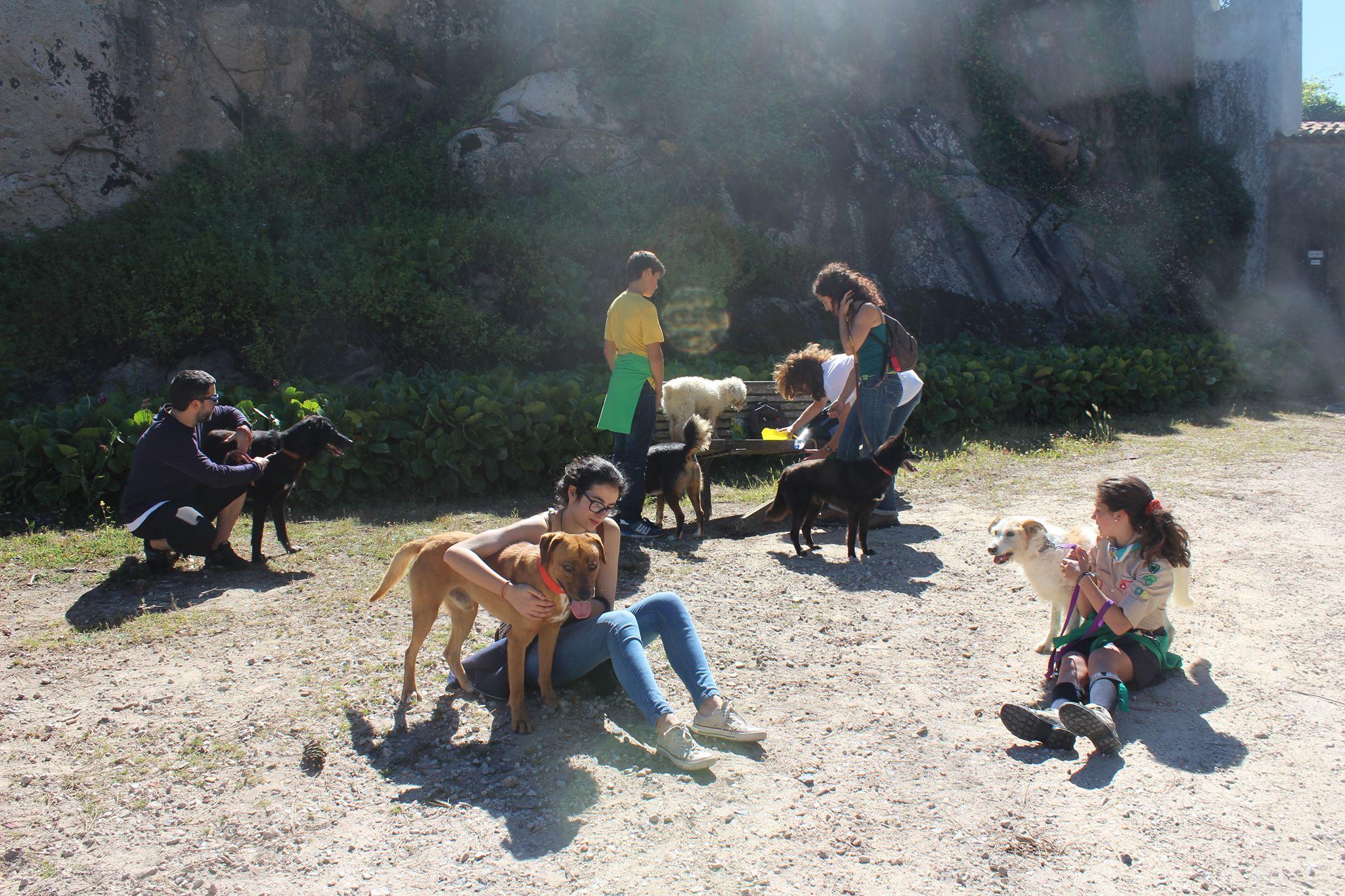 Passeio de cães com jovens praticantes de Reiki
