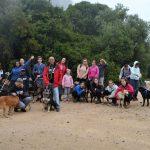 Passeio Solidário com os cães da APCA