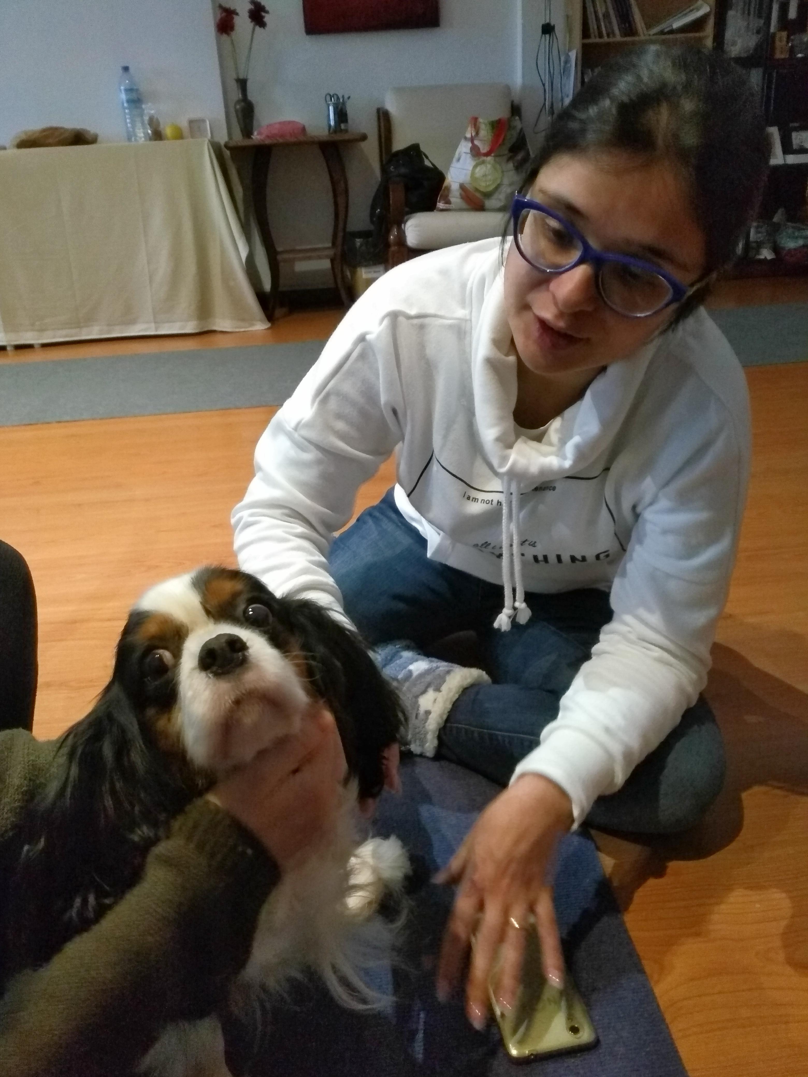 Comemoração do Dia Internacional do Reiki Animal