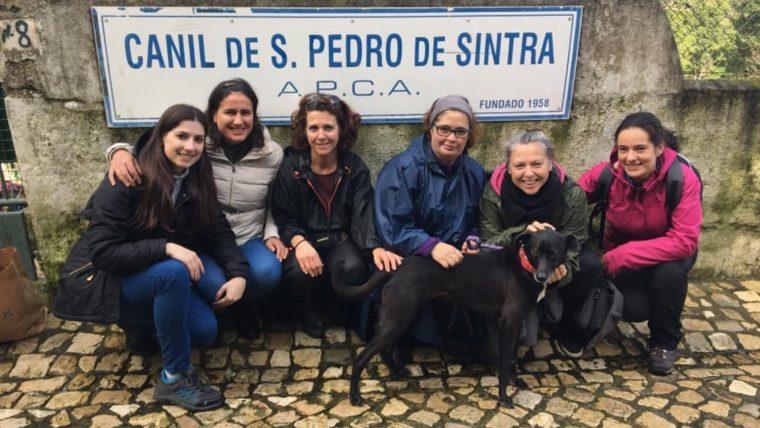 DIA INTERNACIONAL DO REIKI EM ANIMAIS NA APCA E COM O NÚCLEO DE S.PEDRO DE SINTRA