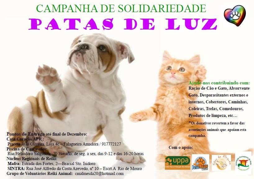 campanha_natal_patas_luz