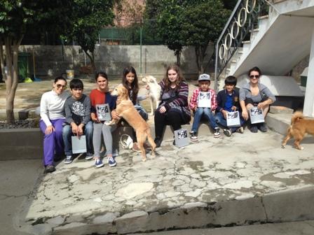Jovens do Núcleo de Guimarães levam Reiki a abrigo de animais