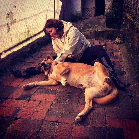 Patricia Branco, voluntária de Reiki para Animais