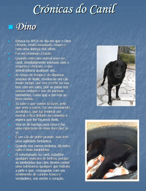 cronicas do canil 1