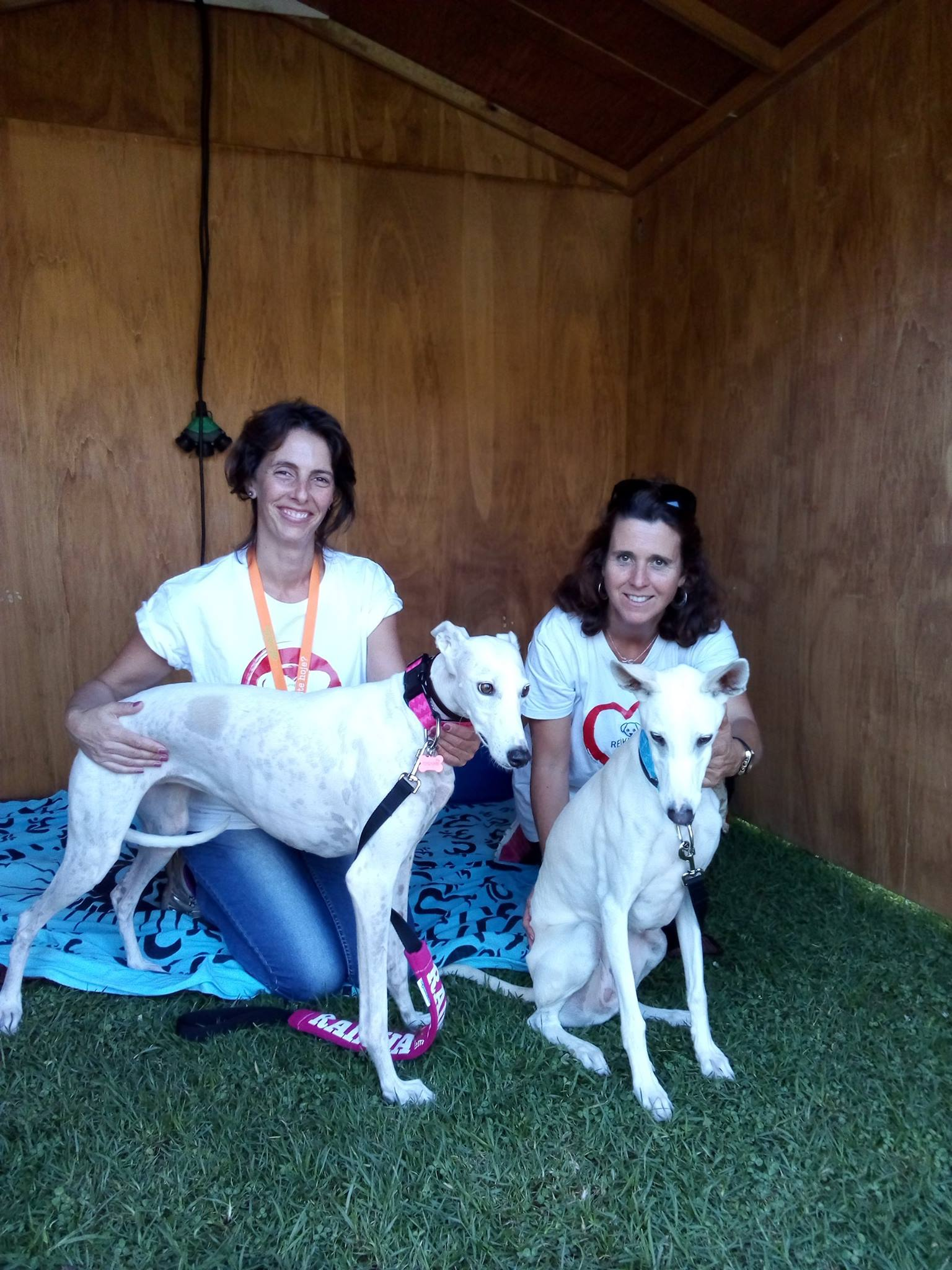 Festa do Animal – Cascais