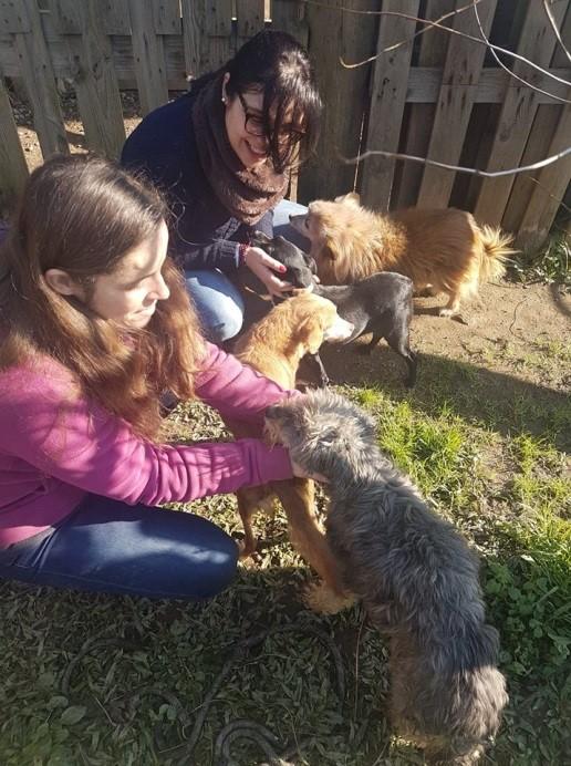 Reiki 4Pets entrega donativos à Abandoned Pets